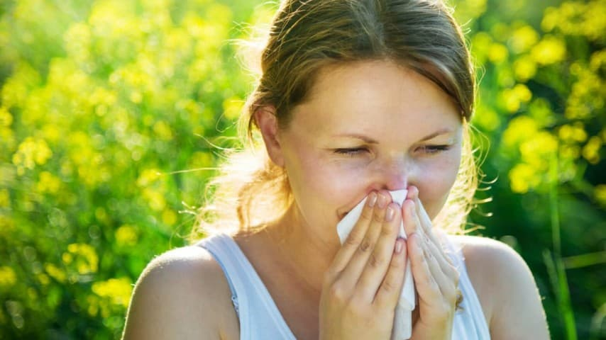 Hay Fever Allergic Rhinitis Ayurvedic Herbal Treatment
